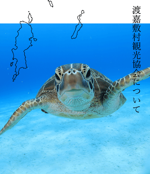 渡嘉敷村観光協会について